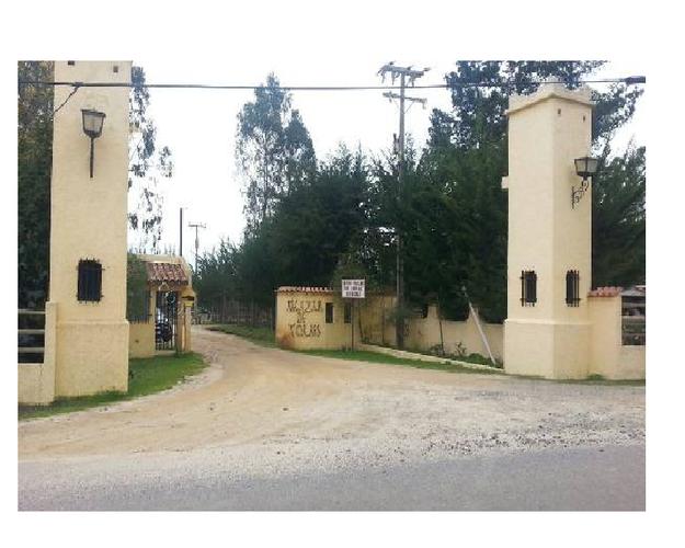 CAMINO INTERIOR s/n, 123, Algarrobo