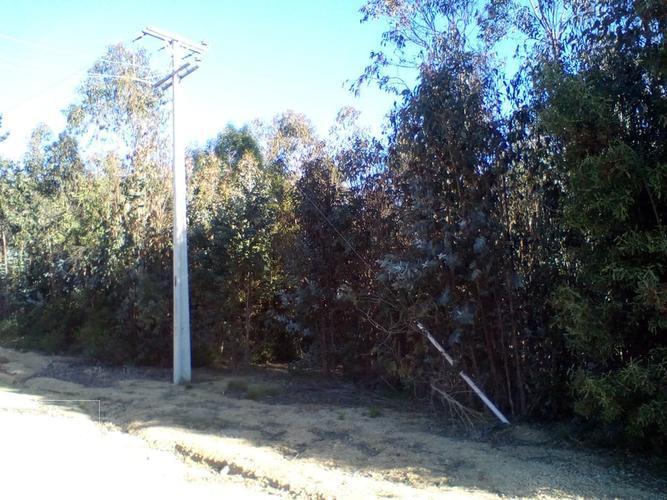Se vende terreno en sector la petrilla a 10 minutos de playa Las Cadenas de Algarrobo.