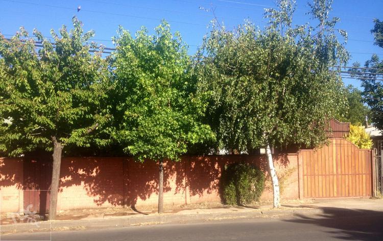 Casa en LAS ROSAS  405, Chillán