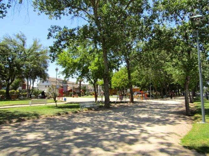 Ciudad Satélite 1: Parque Central Oriente