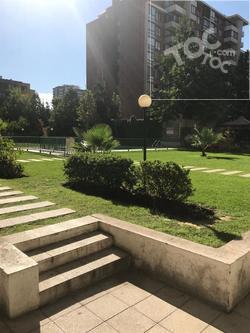 Avenida Macul/ Los Olmos
