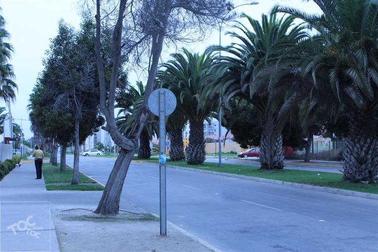Avenida Francisco de Aguirre con Avenida Libertad